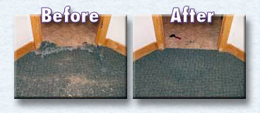 Before and After Carpet Repairs